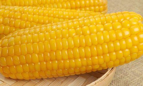 超好吃的静安黏玉米(常温真空包装)购买指南 by 新都物产 7月份继续热卖