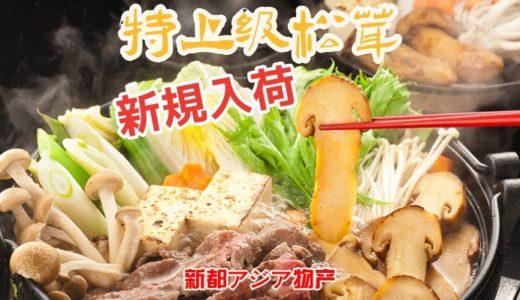 10月新商品松茸介绍 / 新商品松茸を紹介します