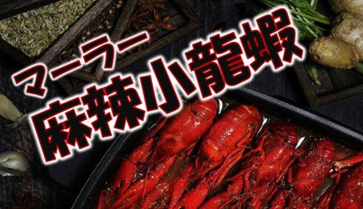 新都物产网店快报-メルマガvol41-2021.08.17